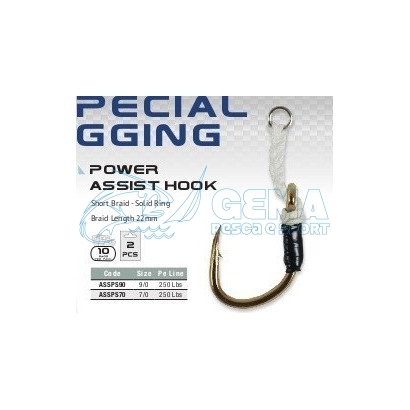 HAYABUSA-POWER-ASSIST-HOOK